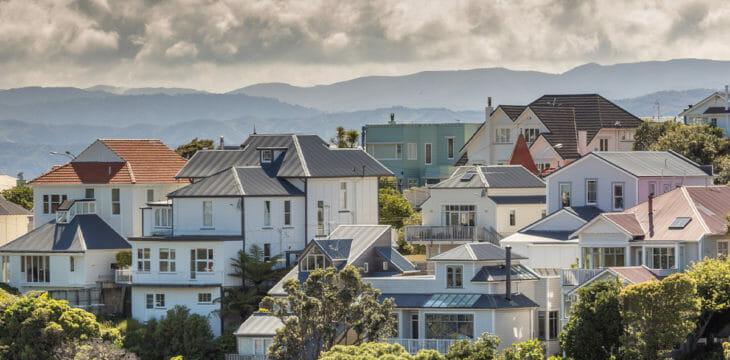 NZ's Damp Housing
